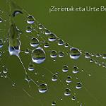 Fotos de Leaburu-Gaztelu