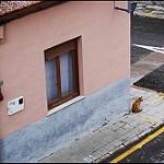 Fotos de La Romana