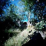 Fotos de Monasterio de la Sierra