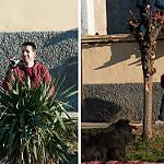 Fotos de Siete Iglesias de Trabancos