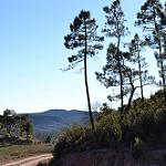 Fotos de Henarejos