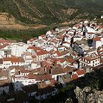 Fotos de Fuencaliente