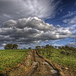 Fotos de Casarabonela
