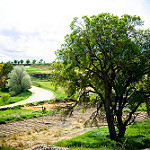 Fotos de Belmontejo