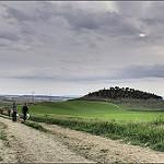 Fotos de Ciguñuela