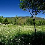 Fotos de Villar del Ala