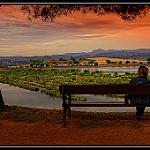 Fotos de Manresa