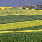 Fotos de Manzanares de Rioja