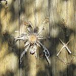 Fotos de Guils de Cerdanya