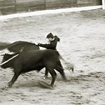 Fotos de Cenizate