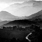 Fotos de La Morera de Montsant