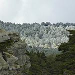 Fotos de Regumiel de la Sierra