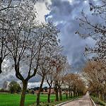 Fotos de Villamantilla