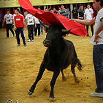 Fotos de La Pedraja de Portillo