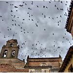 Fotos de Tordesillas
