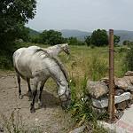 Fotos de Garganta de los Montes