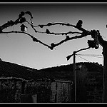 Fotos de Campolara