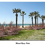 Fotos de Santa Susanna