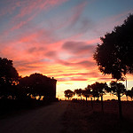Fotos de Villaseco de los Gamitos