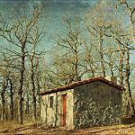 Fotos de Prado de la Guzpeña