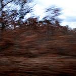 Fotos de Cereceda de la Sierra