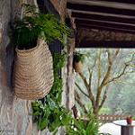 Fotos de Benalua de las Villas