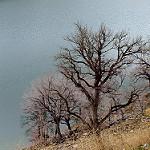 Fotos de Oroz-Betelu