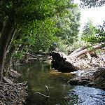 Fotos de La Nava