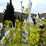 Fotos de Dehesas de Guadix