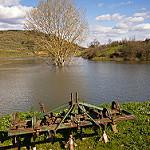 Fotos de Manzanal del Barco