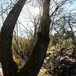 Fotos de Valle de Sedano