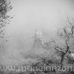 Fotos de Baldellou