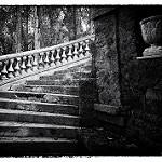 Fotos de Manzanera