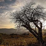 Fotos de Jimena de la Frontera