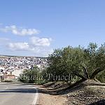 Fotos de Navas de San Juan