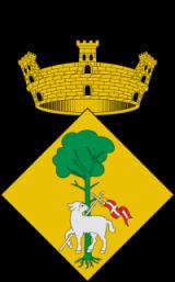 Ayuntamiento de Sant Joan Despí